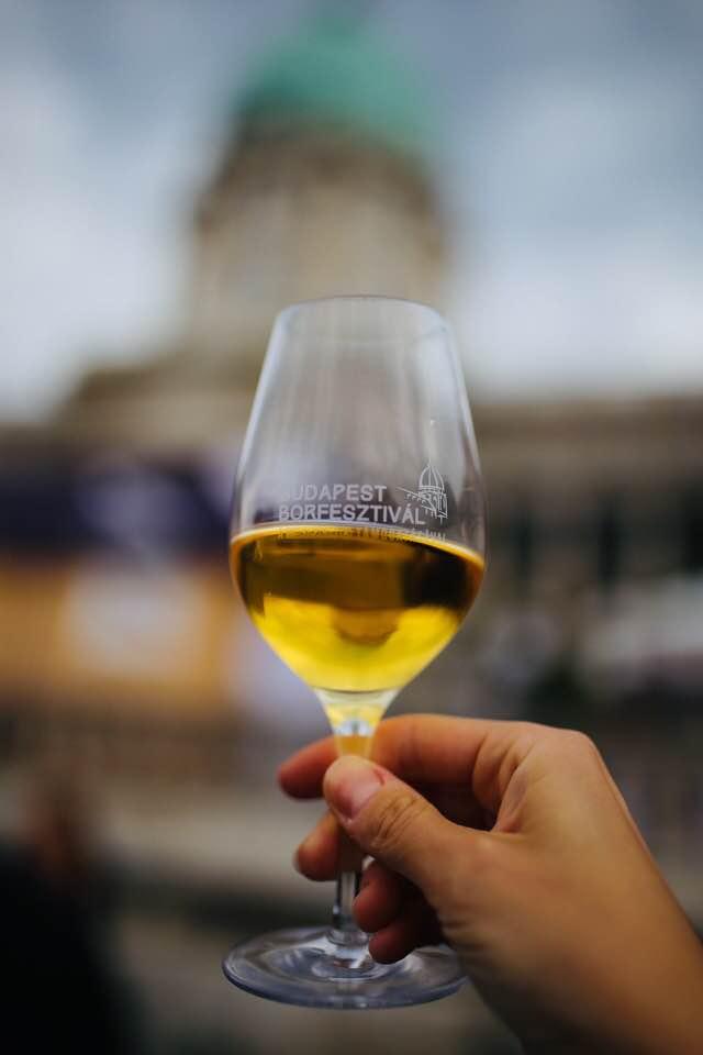 kieliszek wina na festiwalu w Budapeszcie